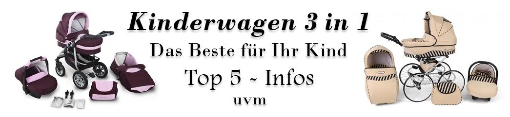 kinderwagen-3-in-1.de